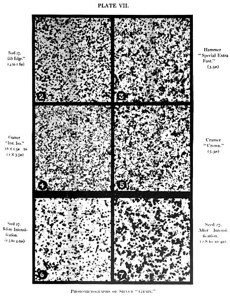 "Figure 1 - Silver halide photographic grains, from the Wikicommons and in the public domain.  Originally from Plate VII from Robert James Wallace, ""The Silver 'Grain' in Photography"" by Robert James Wallace, The Astrophysical Journal, Vol. XX, No. 2, Sept. 1904, pp. 113–122, Chicago."
