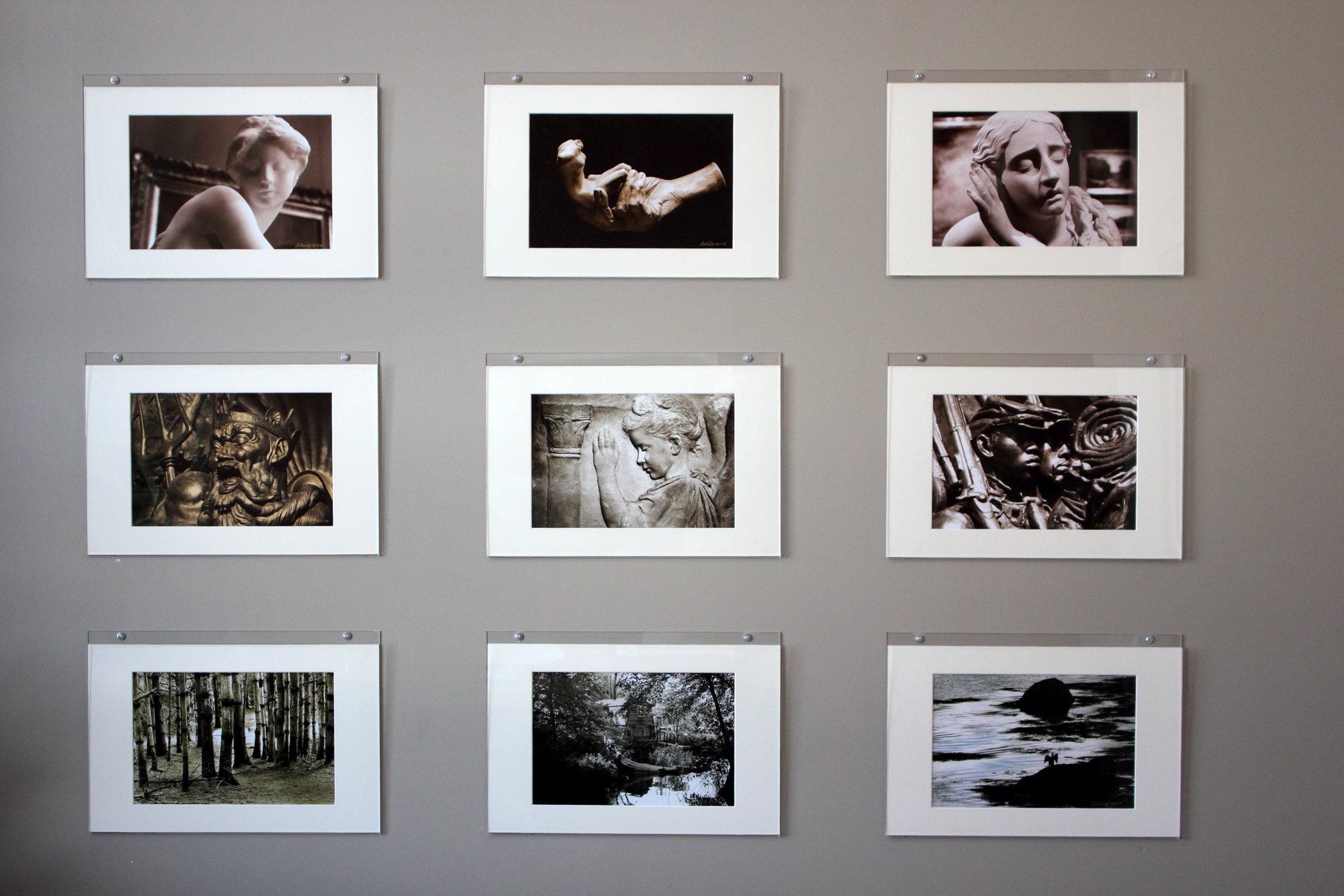 Figure 1 - New exhibit of David's photographs at RMD in Watertown, MA. (c) DE Wolf 2014
