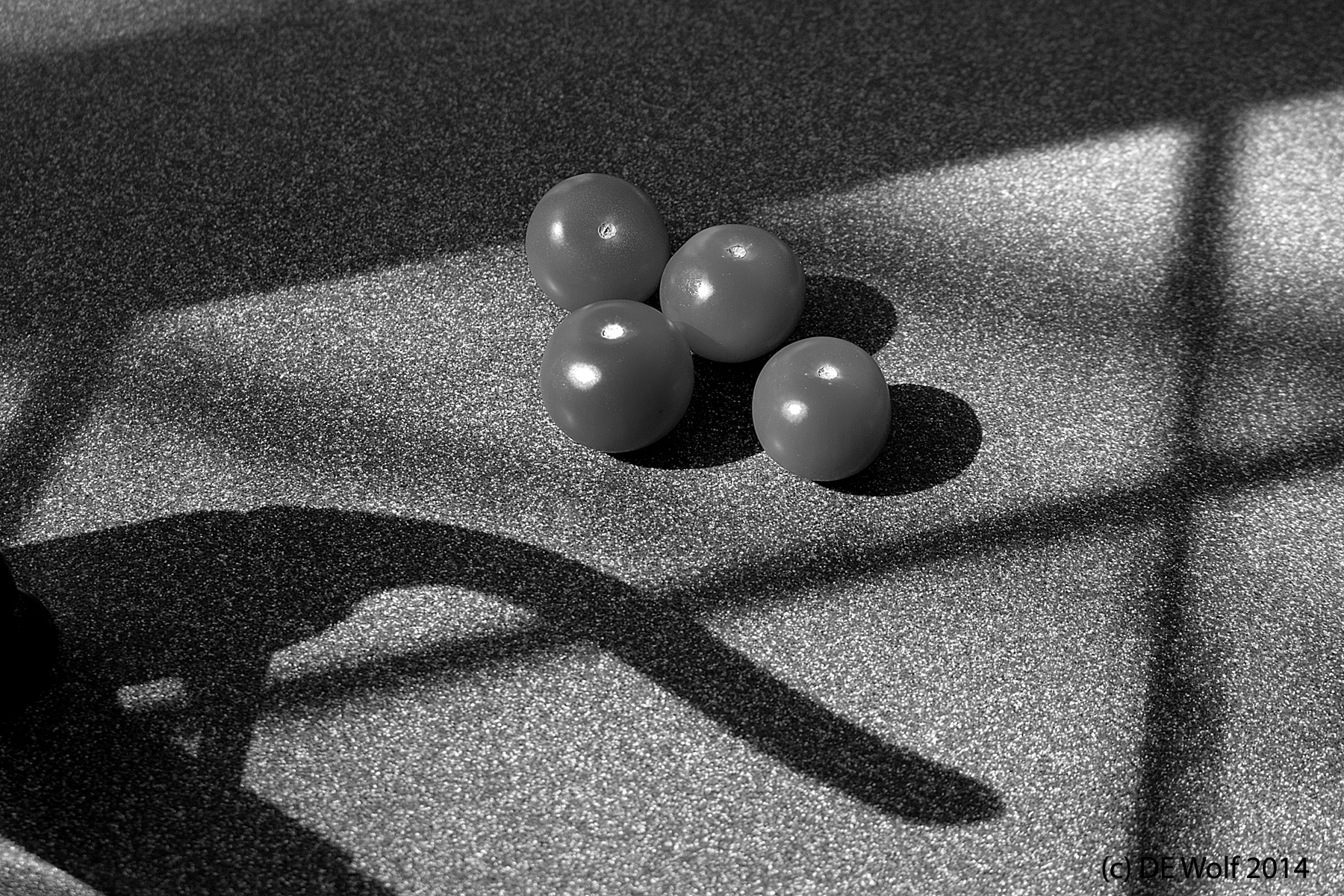 Figure 2 - Long Shadows with Tomatoes, (c) DE Wolf 2014.