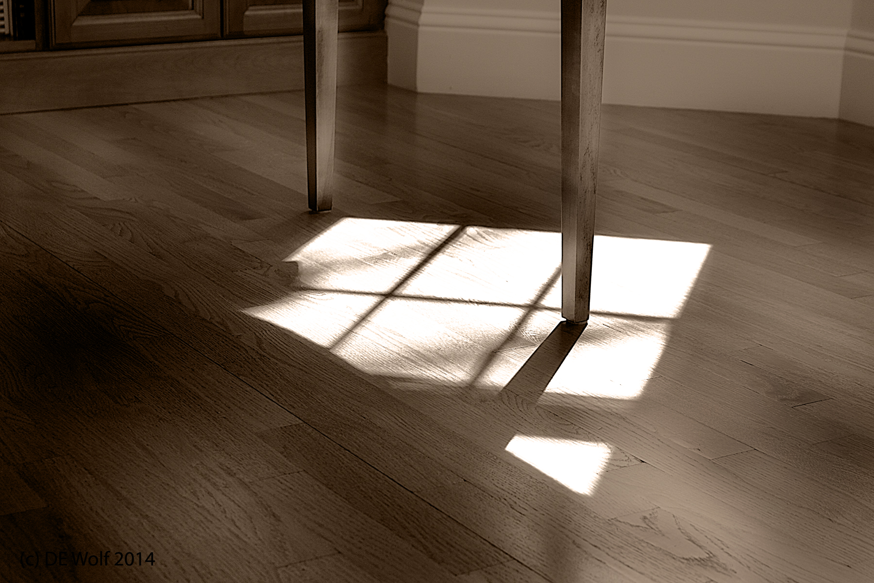 Long Shadows with Simple Gifts, (c) DE Wolf 2014.
