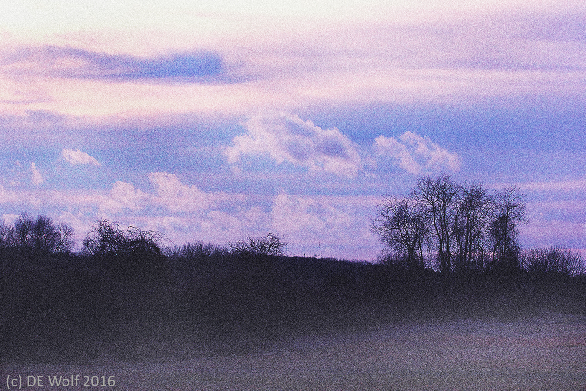 Figure 1 - Photo-pictorialism study # 4 - Tree line. Heard Farm, Wayland, MA. (c) DE Wolf 2016.
