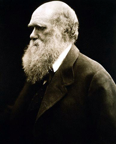 Portrait of Charles Darwin by Julia Margaret Cameron (albumen print) from the Wikipedia and in the public domain in the United States,